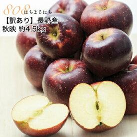 2020年10月以降 訳あり 減農薬 長野 秋映 りんご 約4.5kg 12〜25個入 リンゴ 林檎 秋映え 産地直送 小山
