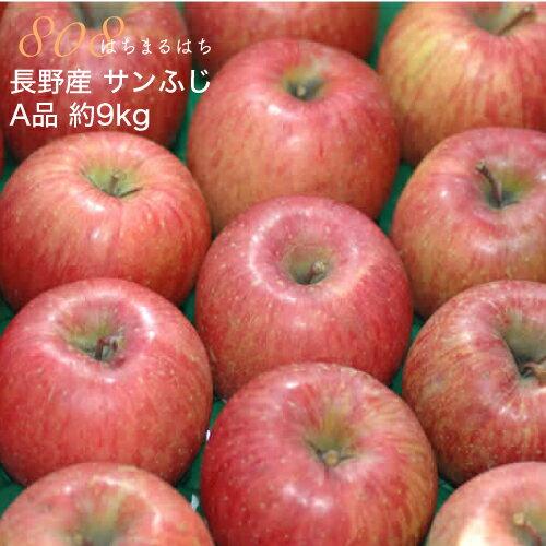 減農薬 長野 サンふじ りんご A品 約9kg 24〜46個入 リンゴ 林檎 産地直送 小山