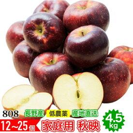 訳あり 減農薬 長野 秋映 りんご 約4.5kg 12〜25個入 リンゴ 林檎 秋映え 産地直送 小山 SSS