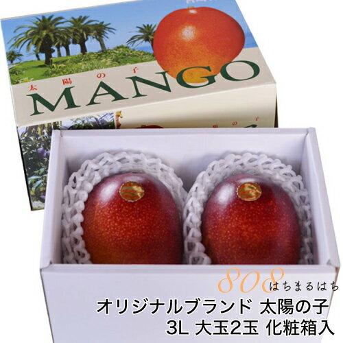 減農薬 マンゴー 太陽の子 大玉 3L 2玉 約1kg 化粧箱入 贈答用 ギフト 宮崎 産地直送