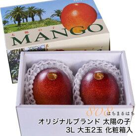 2020年分予約 減農薬 マンゴー 太陽の子 大玉 3L 2玉 約1kg 化粧箱入 贈答用 ギフト 宮崎 産地直送 SSS