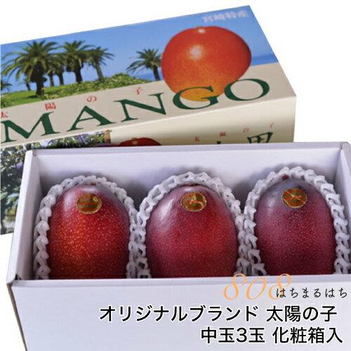 減農薬 マンゴー 太陽の子 中玉3玉 約900g〜1kg 化粧箱入 贈答用 ギフト 宮崎 産地直送