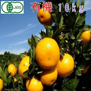 有機JAS みかん 訳あり 約10kg 和歌山産 2S〜2L サイズ混合 ミカン 蜜柑 産地直送 SSS