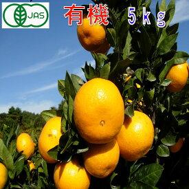 有機JAS みかん 訳あり 約5kg 和歌山産 2S〜2L サイズ混合 ミカン 蜜柑 産地直送 SSS 10t