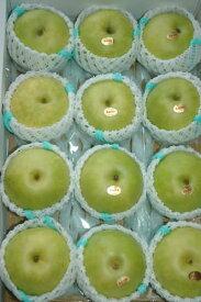 減農薬 長野 二十世紀 梨 約4.5キロ 12〜15個入 贈答用 20世紀梨 20世紀 二十世紀梨 和梨 ギフト 産地直送 SSS