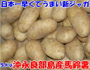 日本一早くてうまい新じゃが 鹿児島県沖永良部産 馬鈴薯 5kg 20〜30個入 メークイン L〜2Lサイズ 秀品 新じゃがいも 新じゃが芋 新ジャガイモ おきの...