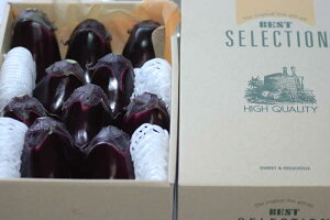 泉州 水なす 10個 約1.5kg 化粧箱入 贈答用 水ナス 水茄子 ギフト SSS