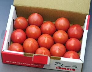 甘さと栄養価が濃縮された高糖度トマト アメーラ 1kg 8〜12個 産地化粧箱入 9t