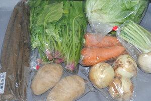 無農薬 有機栽培 旬の野菜セット 産地直送 有機農法 有機農業 SSS 9t