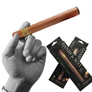 電子タバコ 電子たばこ 葉巻タイプ 約1800回吸引可能 DANDY&SEXY 禁煙グッズ(送料無料)