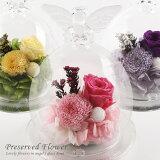 デザイン仏花天使のガラスドーム