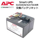 【あす楽対応_関東】APC RBC48L Smart-UPS SUA500JB/SUA750JB用交換バッテリキット