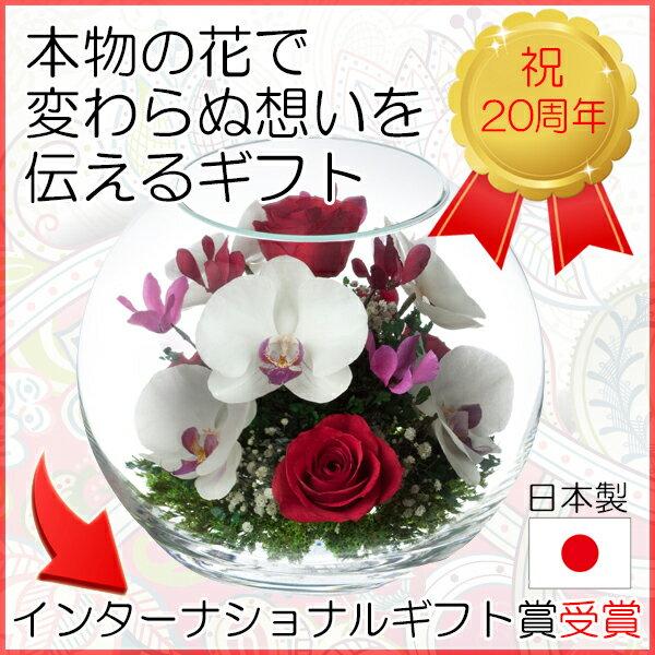 ドライフラワー ボトルフラワー レンデフロール B-L 新築祝い 開業祝い 花ギフト 母の日 定年祝い