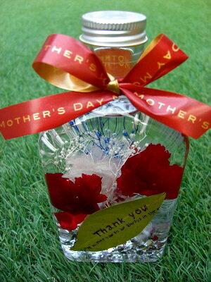 母の日ギフト 植物標本 ハーバリウムカーネーション『サンキュー マザーズデイ』 【地域限定送料無料】5月8日〜12日の期間にお届けとさせて頂きます。 当店オリジナル ハンドメイド