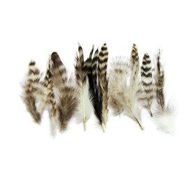 羽 パーツ 鶏 ブリモース キャラオ(10枚)(ナチュラル) 1枚7〜15cm #33 羽 パーツ根 フェザー 手芸材料 パーツ