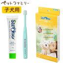ビバテック VIVATEC シグワン 初めての歯磨きセット #107 子犬用 (62500110)