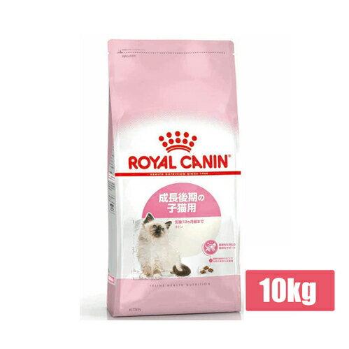 【送料無料】ロイヤルカナン キトン 10kg成長後期の子猫用(52905071)●