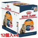 【正規品】ロイヤルカナン FCN-WET インテンスビューティ美しい被毛を維持したい成猫用 85g1ケース(85g×48個)(52909976)