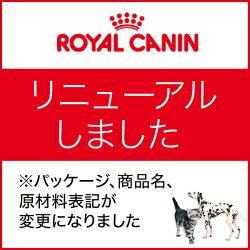 【正規品】ロイヤルカナンFHN-WETベビーキャット100g×24(s5290008)
