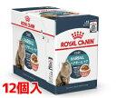 【正規品】ロイヤルカナンFCN-WET ヘアボール ケア 85g×12個セット【RC-HC0218】【IN_201604_08】