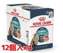 【正規品】ロイヤルカナンFCN-WET ヘアボール ケア 85g×48個セット【IN_201604_08】
