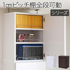 本棚 深型 ラック 扉付き 上置き 幅41.5 MEMORIA 棚板が1cmピッチで可動する