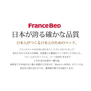 【送料無料】フランスベッドマットレスZT-030シングルサイズ|高密度連続スプリングマットレスシングルシングルベッドマットレスベッドシングルベッドフランスベットベッドマットベットフランスベッドシングルマットレスフランスベッドマットレスシングル