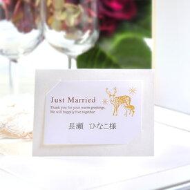 席札 手作りセット カーサ・クリスマス(10名分) /結婚式 ペーパーアイテム テンプレート付