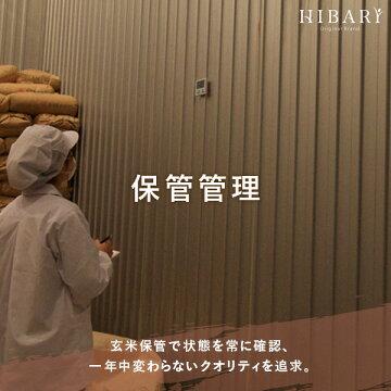 新米10kgコシヒカリ送料無料平成30年産新潟産こしひかりHIBARI