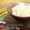 新米 秋の詩 3kg 令和2年産 近江米 特別栽培米 滋賀県産