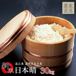 【予約販売】新米 日本晴 30kg 令和2年産 近江米 滋賀県産【10月中旬頃入荷予定】