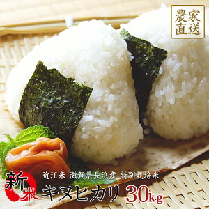 新米 キヌヒカリ 30kg 令和2年産 近江米 滋賀県産