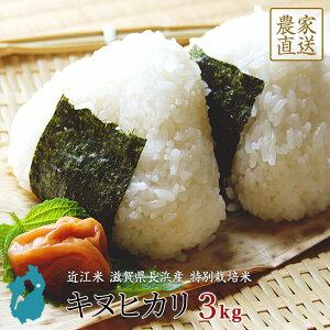 キヌヒカリ お米 3kg 送料無料 近江米 滋賀県産 環境こだわり米 令和2年産 美味しい 玄米 白米