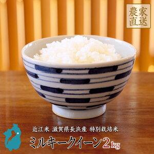 お米 ミルキークイーン 2kg 令和2年産 近江米 滋賀県産 特別栽培米