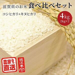 米 お米食べ比べ セット コシヒカリ キヌヒカリ (2kg×2種 計4kg) 令和2年 滋賀県産 近江米 白米 玄米 送料無料 少量 味比べ