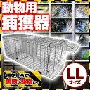 動物 捕獲器 アニマルキャッチャー LLサイズ 94x34x37cm 害獣 折り畳み 組み立て式 捕獲器 保護器 アニマルトラップ …