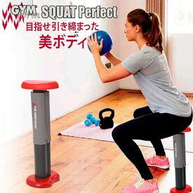 Gymform Squat Perfect ジムフォームスクワット パーフェクト スクワットマシン スクワット マシーン ジムスクワット 屈伸 屈伸運動 5段階 調節 可能 運動 トレーニング 健康器具 運動器具 トレーニングマシン 送料無料