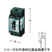 在庫品 GB-1ZA 2P 15A 15MA 2P1E テンパール工業 安全ブレーカサイズ漏電ブレーカ