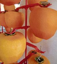 柿ハンガー赤5本(5段×5本)