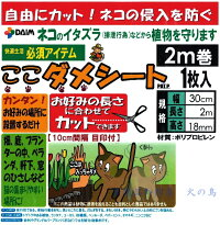 DAIMここダメシート2m巻動物を傷つけない樹脂製の突起で侵入を防ぐ!ベランダ、軒下、畑、お庭等の猫よけに第一ビニール株式会社