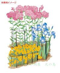グリーンガーデンフラワーガードNo.406-210本1組接続ジョイント付(1本につき1個)鋼硬線材で花や草をしっかり支えます!花壇や植木鉢・プランターの花ささえに草花の倒れを目立たず防ぎます!#日本製#花ささえ#花支柱