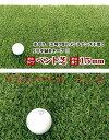 【送料無料】(沖縄県を除く)人工芝 グリーンターフ 芝の長さ15mm 1m×10m GTF-1510 ベント芝