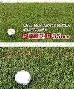 【送料無料】(沖縄県を除く)人工芝 グリーンターフ 芝の長さ35mm 1m×10m GTF-3510 高麗芝
