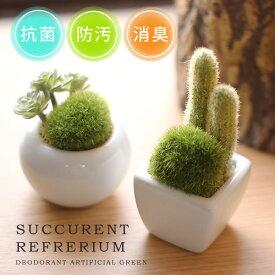 【ポイント10倍】サキュレントリフレリウム 消臭アーティフィシャルグリーン【消臭グッズ 空気清浄 造花 観葉植物 デオドラント 多肉植物】