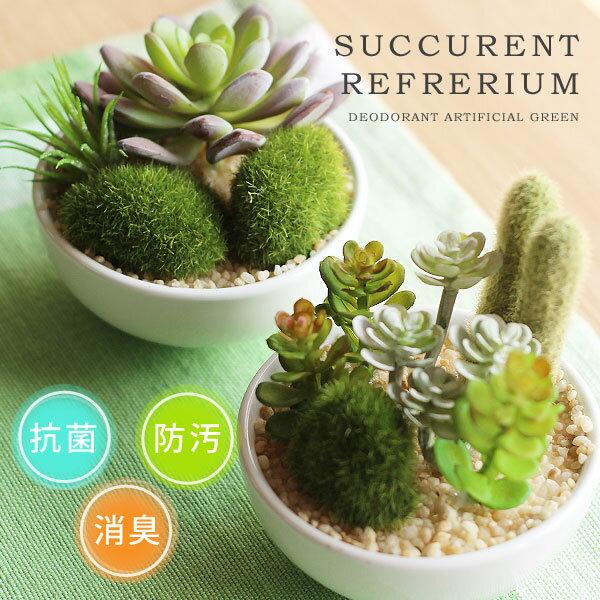 サキュレントリフレリウム 消臭アーティフィシャルグリーン【消臭グッズ 空気清浄 造花 観葉植物 デオドラント】