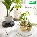 tidy Plantable プランタブル【水受け キャスター移動 鉢皿 鉢置台】