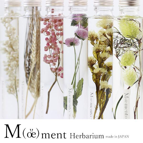 Moemento ハーバリウム【Herbarium ドライフラワー プリザーブドフラワー お祝い ギフト 植物標本】