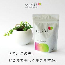 2個購入 送料無料 エクエル パウチ 120粒入り 約30日分 大塚製薬 大豆イソフラボン 乳酸菌 コラーゲン エクオール EQUELLE