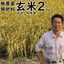 無農薬 無肥料 栽培米 2Kg//玄米 レターパックでお届け|福岡県産 夢つくし筑後久保農園無農薬 玄米自然栽培米