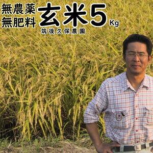 【クーポンで10%OFF】~無農薬 無肥料 栽培米 5Kg//玄米|福岡県産 にこまる筑後久保農園無農薬 玄米自然栽培米